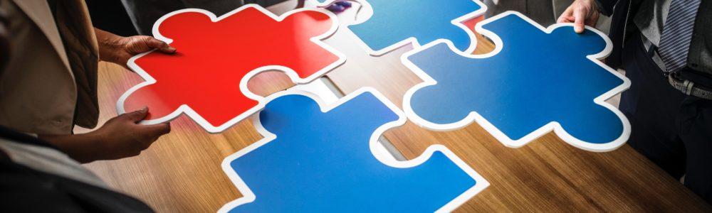 iculum puzzle encajar piezas