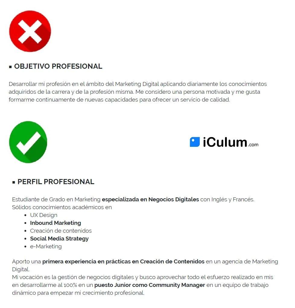 Curriculum de Estudiante Perfil iCulum
