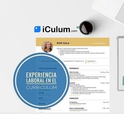 Experiencia Laboral en el Curriculum iCulum